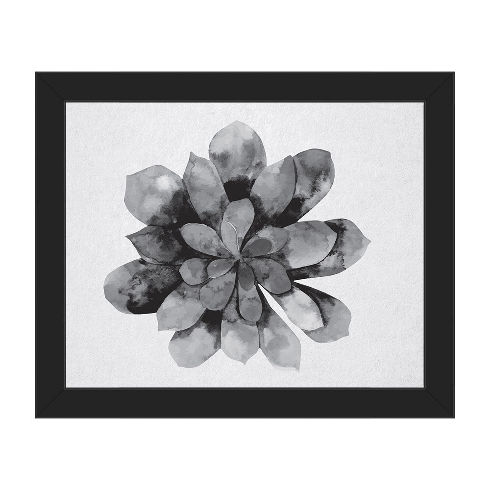Click Wall Art Succulent Watercolor Black And White Framed