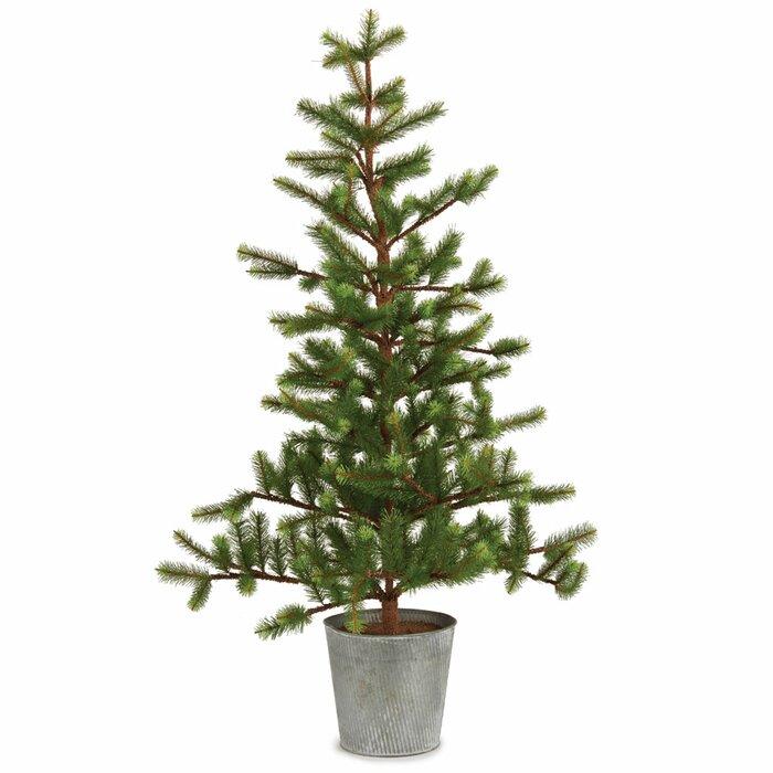 Christmas Fir Trees