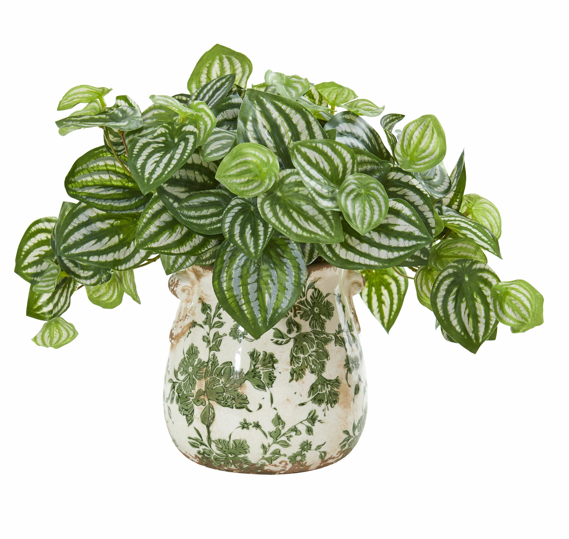 Charlton Home Artificial Watermelon Peperomia Foliage Plant In Decorative Vase Reviews Wayfair