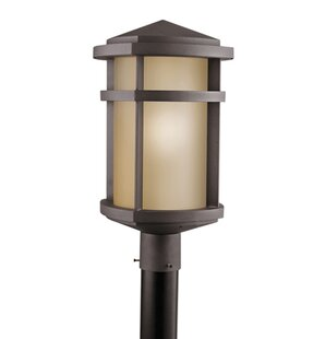 Red Barrel Studio Bowie Outdoor 1-Light Lantern Head