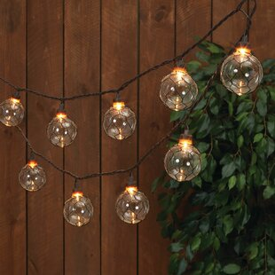 Honora Chicken Wire 8.5 ft. 10-Light Globe String Light