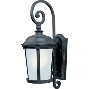Darby Home Co Dove Springs LED Outdoor Wall Lantern