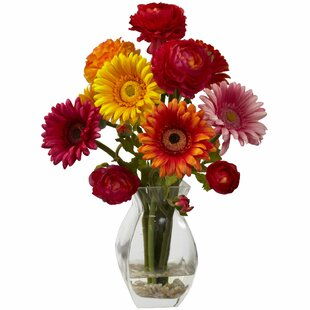 Gerber Daisy and Ranunculus Delight Arrangement in Glass Vase