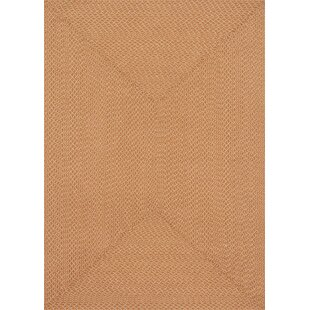 Daniell Hand-Woven Orange Indoor/Outdoor Area Rug