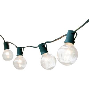 Wintergreen Lighting 25-Light 25 ft. Globe String Lights
