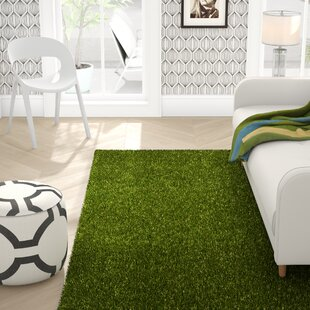 Obadiah Grass Green Indoor/Outdoor Area Rug