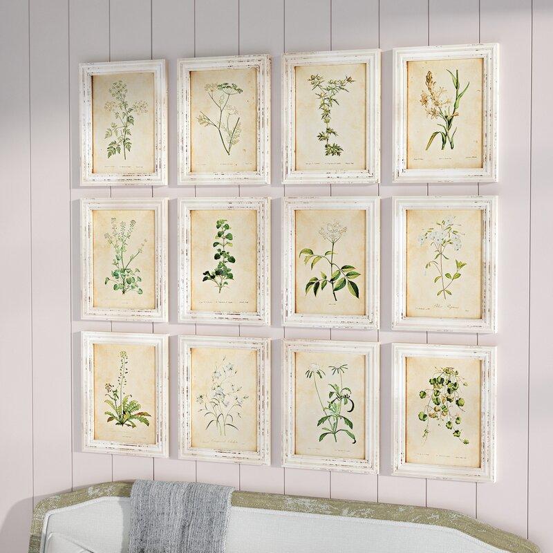 One Allium Way Wild Flower Botanical 12 Piece Framed Graphic Art Set ...
