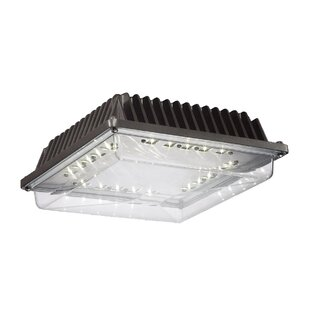 Eurofase 20-Light Flush Mount