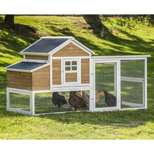 Victorian XL Barn Chicken Coop