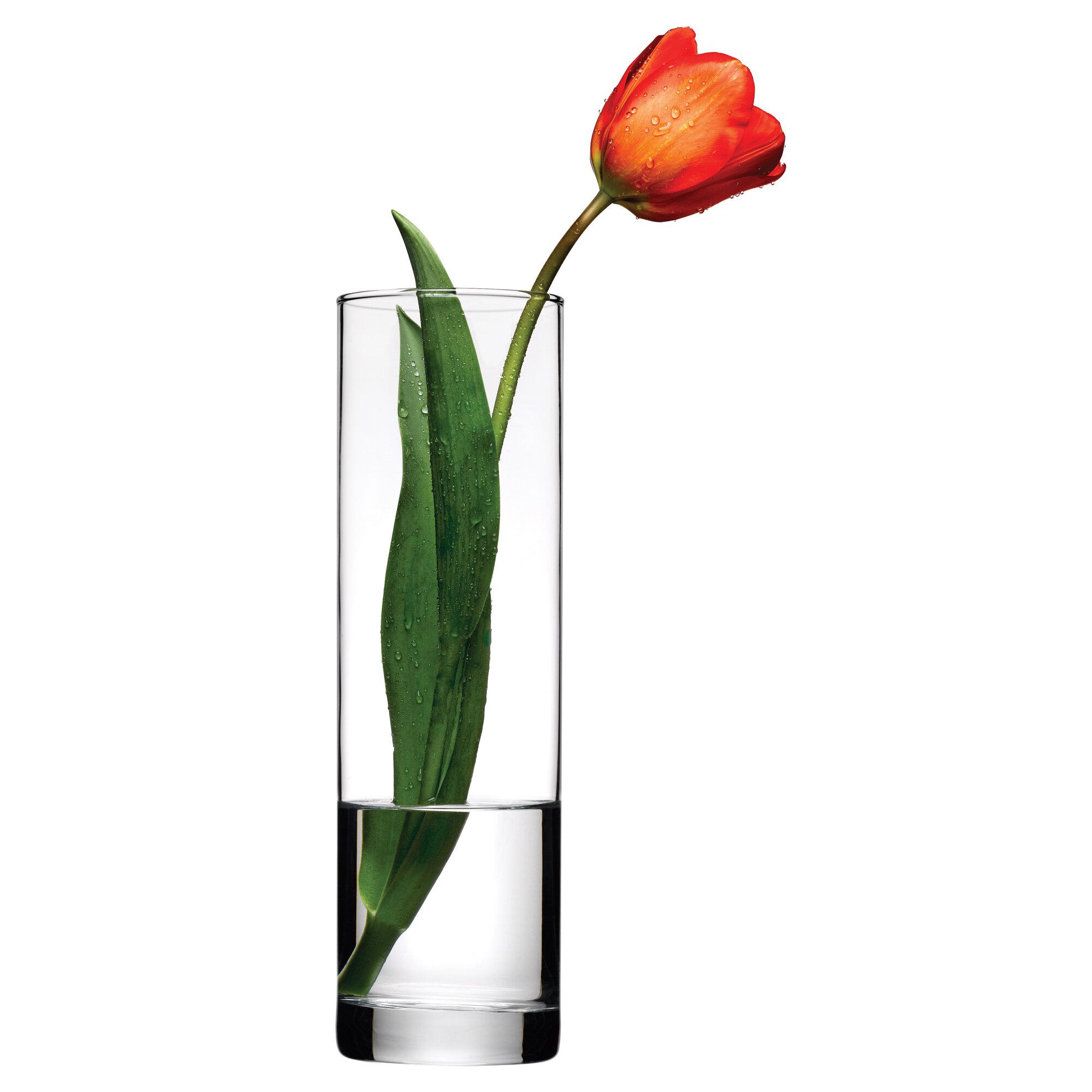 Table Vases You Ll Love Wayfair Co Uk