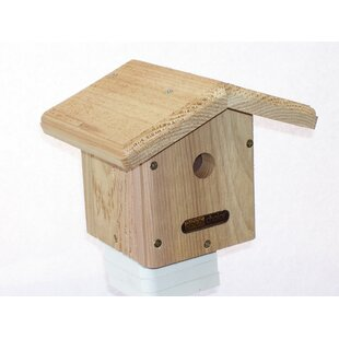 Birds Choice Cedar 8 in x ..