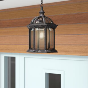 Buy clear Newbrook 1-Light Outdoor Hanging Lantern By Bay Isle Home