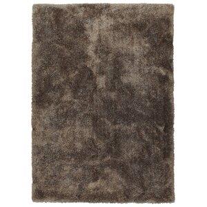 Bieber Brown Area Rug