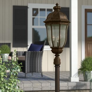 Oakhill Traditional Outdoor 1-Light Lantern Head by Charlton Home