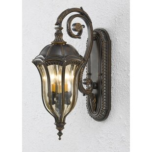 Chesterhill 3-Light Outdoor Wall Lantern ..