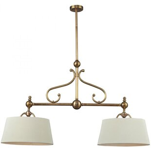 Darby Home Co Dahill 2-Light LED Pendant