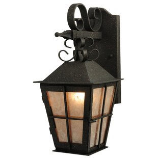 Great Price 1-Light Outdoor Wall Lantern By Meyda Tiffany