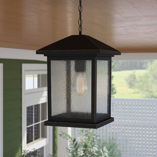 Lovette 1-Light Outdoor Hanging Lantern
