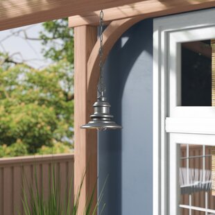 Griffin 1-Light Matte Silver Outdoor Pendant