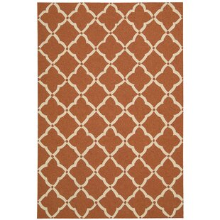 Merganser Hand-Tufted Orange/Beige Indoor/Outdoor Area Rug