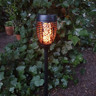 Dowland 51-Light LED Pathway Light By Sol 72 Outdoor