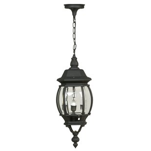 Charlton Home Oakhill 3-Light Outdoor Hanging Lantern