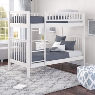 Look for Shyann Twin over Twin Bunk Bed by Viv + Rae Reviews (2019) & Buyer's Guide