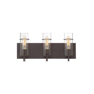 Williston Forge Hamon 3-Light Vanity Light