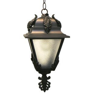 Petrey 1-Light Outdoor Hanging Lantern