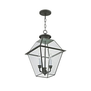 Tackett 3-Light Outdoor Hanging Lantern
