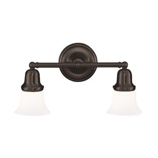 Darby Home Co Ellery 2-Light Vanity Light