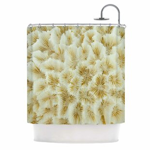 'Ivory White Ocean Beach Coral' Photography Single Shower Curtain