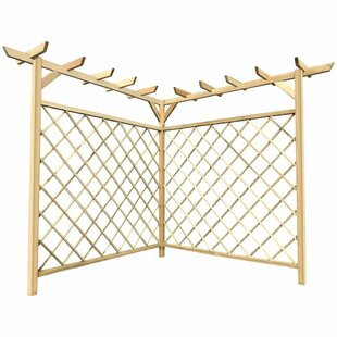 Fernald 1.6m X 1.6m Solid Wood Pergola By Sol 72 Outdoor