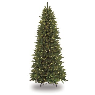 pre lit slim fraser 12 green fir artificial christmas tree with 1200 clear lights with stand