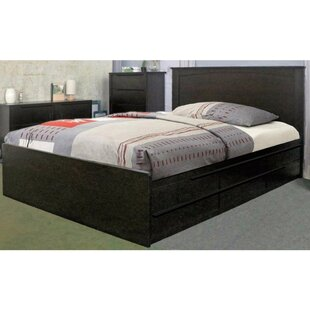 Drinnon Deluxe Storage Platform Bed by Latitude Run
