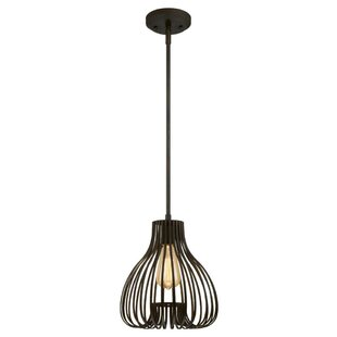 Westinghouse Lighting 1-Light Teardrop Pendant