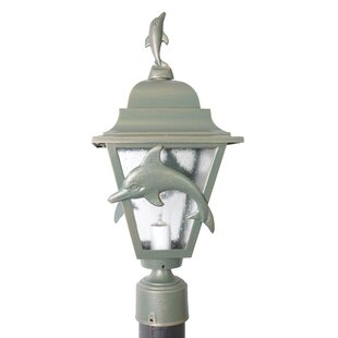 Alcott Hill Penfield Dolphin Series 1-Light Lantern Head