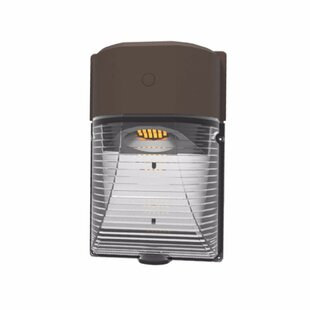 Best Reviews Kasten 1-Light Outdoor Flush Mount By Symple Stuff