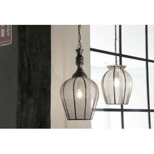 Bungalow Rose Crewe Open Design 1-Light C..