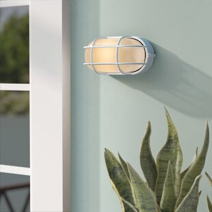 Beachcrest Home Rivka 1-Light Glass Shade Outdoor Bulkhead Light