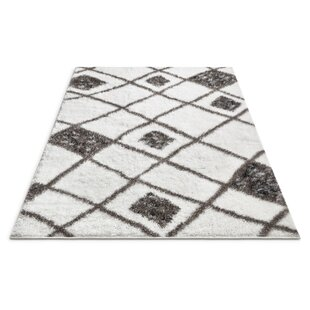 Puentes Outstanding Artisan Shag Soft White Area Rug ByWrought Studio