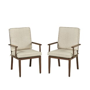 Mauricio Swivel Patio Dining Chair with Cushion (Set of 2)