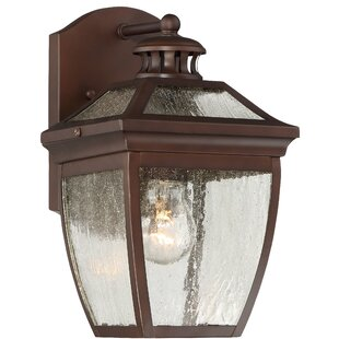 Darby Home Co Auer Outdoor Wall Lantern