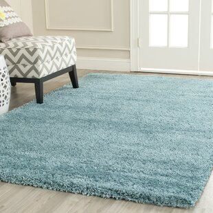 Starr Hill Aqua Blue Area Rug