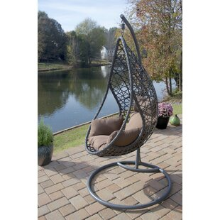 Brayden Studio San Marino Hanging Egg Swing Chair with Stand