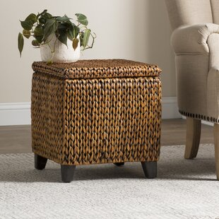 Inexpensive Nobles Storage Ottoman By Beachcrest Home