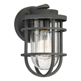 Beachcrest Home Hobkirk 1-Light Outdoor Wall Lantern