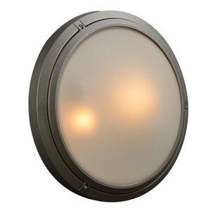 Halvorson 2-Light Outdoor Flush Mount
