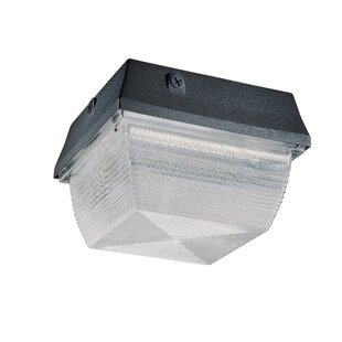 Nuvo Lighting Architectural 1-Light Outdoor Flush Mount