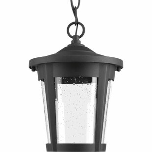 Duke 1-Light Outdoor Hanging Lantern By Alcott Hill Outdoor Lighting